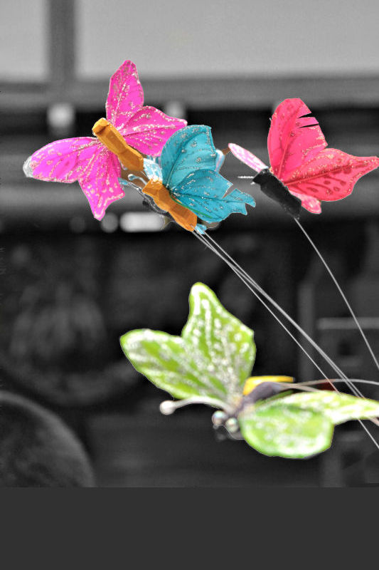 Beautiful-Butterfly-Decorations