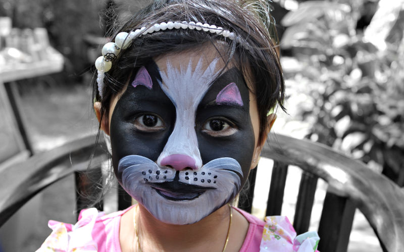 Black White Cat Face Painting