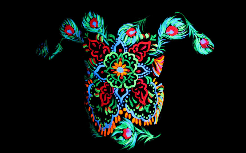 Mandala Fluro Body Paint