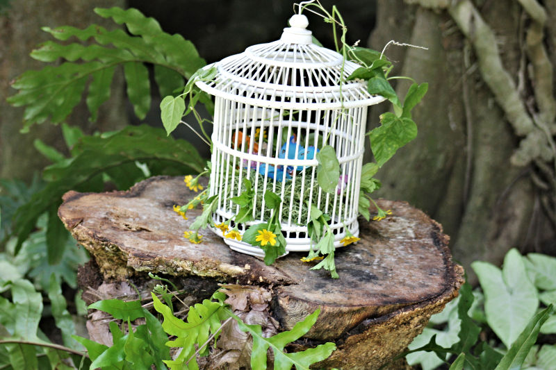 Fairy-Party-Fairy-Cage